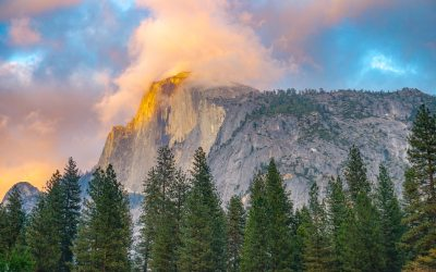 Sequoia and Yosemite Tour