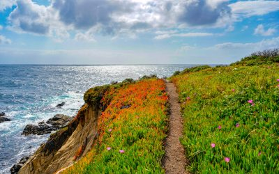 Southern California National Parks Adventure