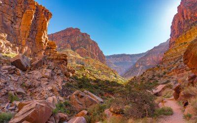 Grand Canyon Tour – South Rim