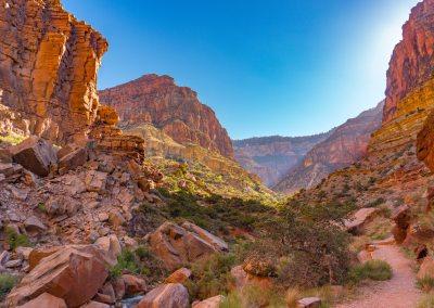 Grand Canyon Tour - South Rim