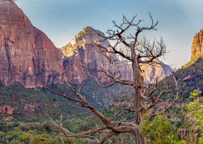 Zion National Park Tour